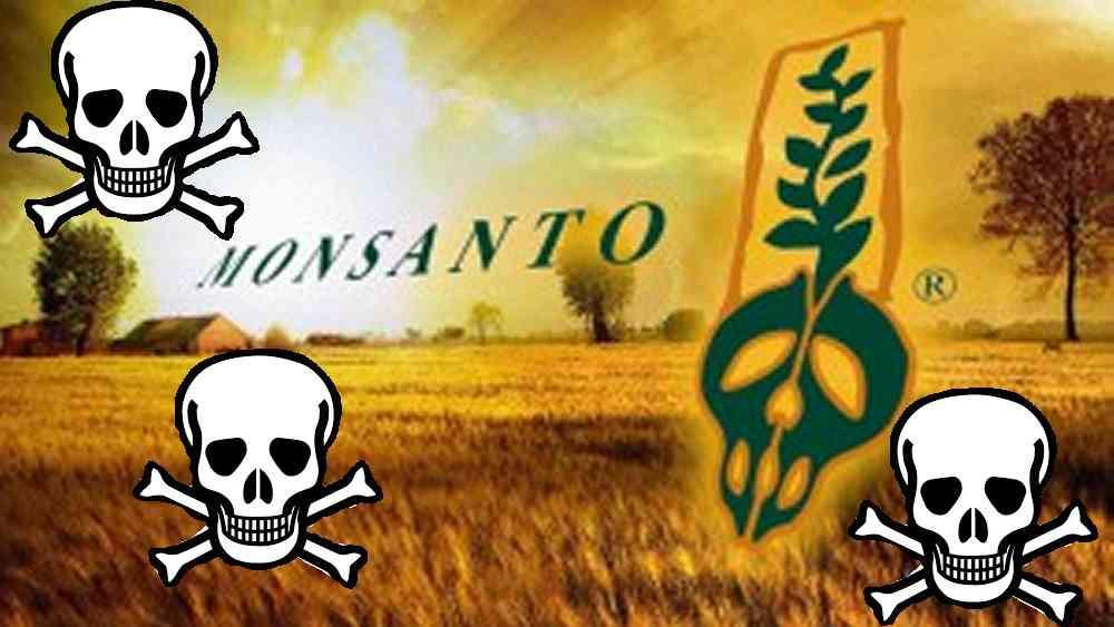 Monsanto 300x169